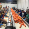 WRH Staff Help Feed the World